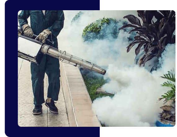 Pest Fumigation Services in Sydney